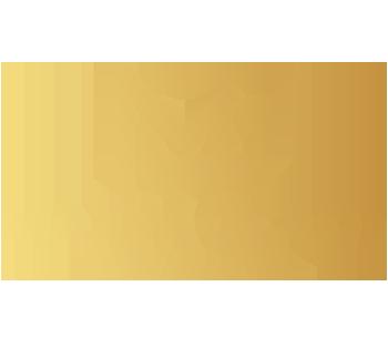 MAXIM GOLDT